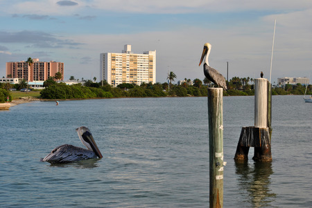 pinellas: Clearwater Beach in Florida Stock Photo
