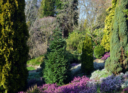 botanical gardens: Fletcher Moss Botanical Gardens Stock Photo