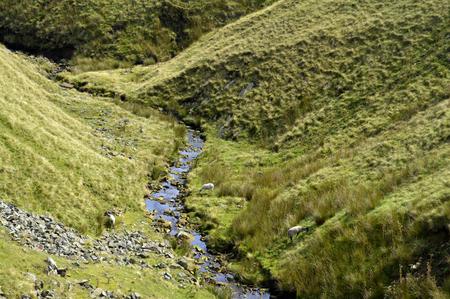grassing: Stream in Derbyshire, England UK Stock Photo