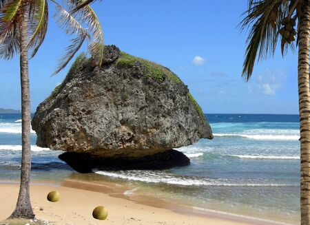 indies: Tobago in the West Indies Stock Photo