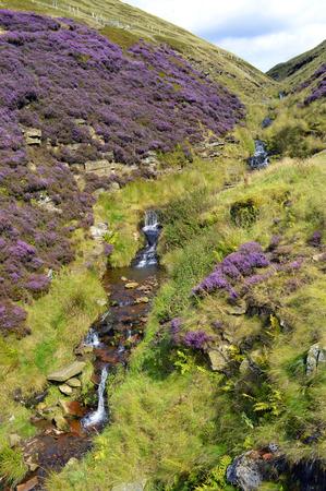 derbyshire: Waterfall in Derbyshire, England UK