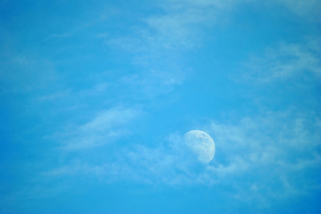 waxing gibbous: Half moon in Florida Stock Photo