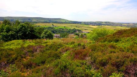 moors: Fields on the West Pennine Moors near Darwen