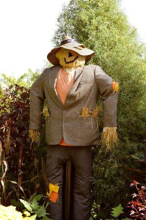 vestidos antiguos: Espantapájaros un hombre de paja hecha de ropa vieja y la paja Foto de archivo