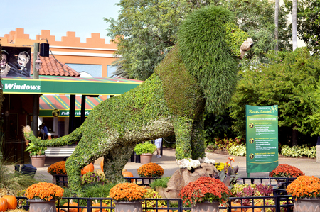 Busch Gardens Stock Photos. Royalty Free Busch Gardens Images