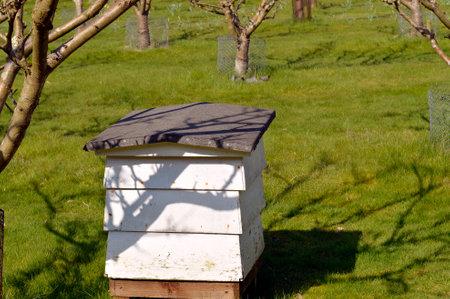Ruche utilisé aux fins de la production de miel et la pollinisation des arbres fruitiers à proximité Banque d'images - 75128792