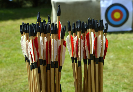 Close-up of a box of arrows showing the fletchings, arrows are use for sport and hunting Reklamní fotografie