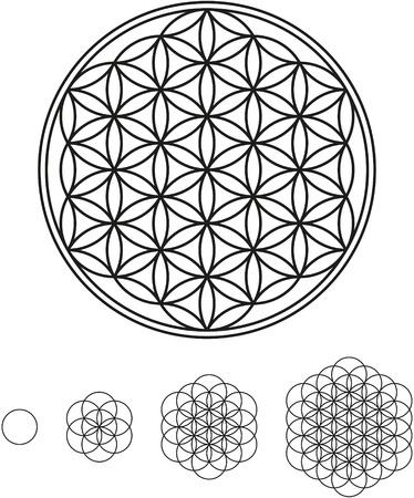 曼陀羅: 生命の開発の花  イラスト・ベクター素材