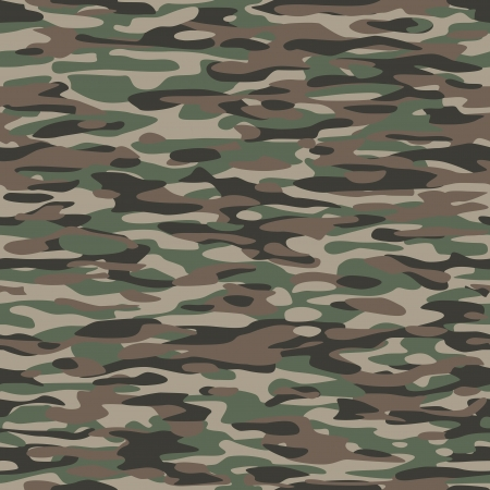 Camouflage Textile Pattern