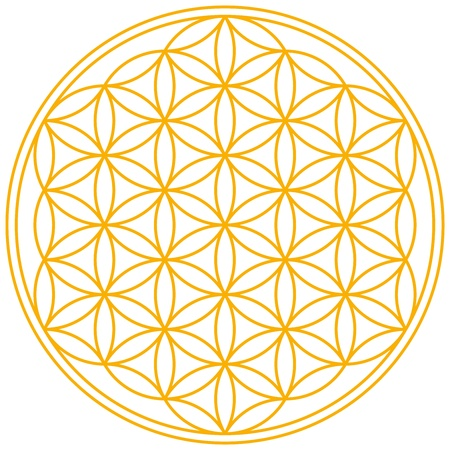 an amulet: Flower of Life Illustration