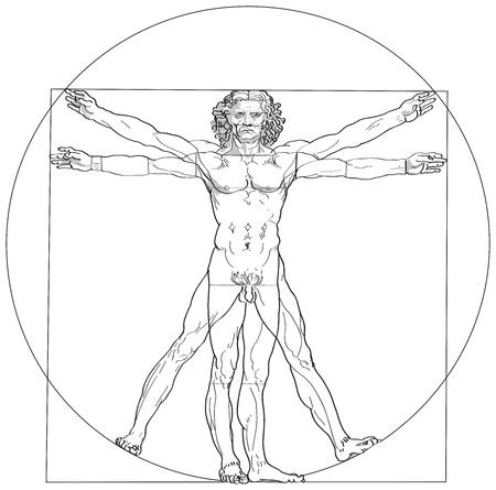naked male body: Vitruvian Man Leonardo da Vinci