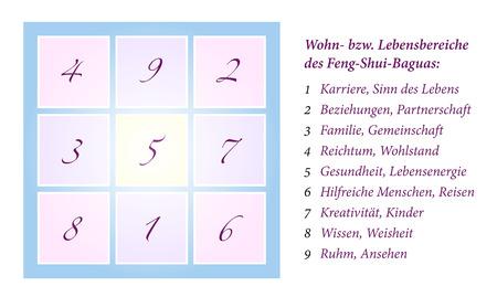 白い背景の上 Feng Shui 八卦、9 生命状況区域ドイツのラベリング分離プロセスの包括的説明のイラスト ベクトルします。