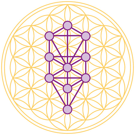 sacred geometry: Tree Of Life Fits Perfect In The Flower Of Life Illustration