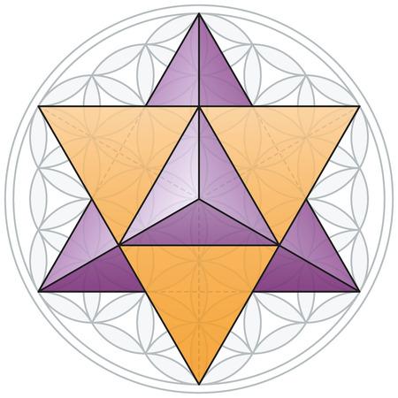 マカバと生命の花  イラスト・ベクター素材