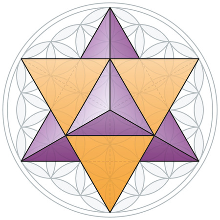 polyhedron: Merkaba Y La Flor de la Vida Vectores