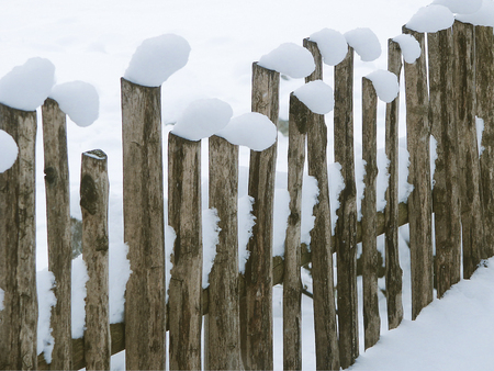 stockade: Snow toppings on a wooden fence that seem to nod