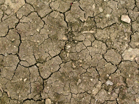 rifts: Dry and dusty earth with many rifts  Stock Photo