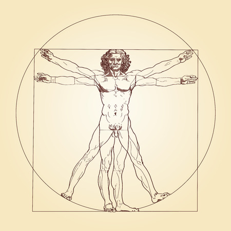 vinci: Illustration of the Vitruvian Man, based on the records of Leonardo da Vinci and the architect Vitruvius  Illustration
