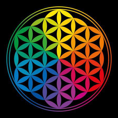 Blume des Lebens Regenbogen-Farben mit Regenbogenfarben, einem geomtric Figur, von mehreren gleichmäßigem Abstand überlappenden Kreisen Ein dekoratives Motiv seit der Antike, bilden eine Blume artiges Muster mit der symmetrischen Struktur eines Hexagons zusammengesetzt