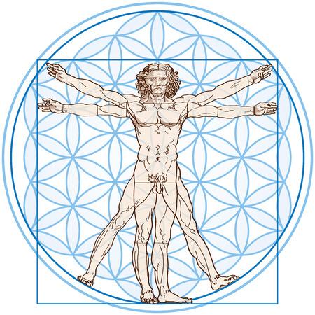 geometri: Vitruvius Adamı asetat ve gradyanlarla beyaz zemin üzerine Çiçek Of Life Vektör resimde uyuyor Çizim