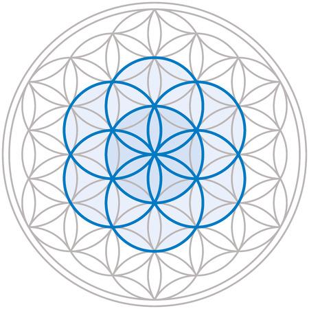 Samen des Lebens in der Mitte der Blume des Lebens, eine geometrische Figur, von mehreren gleichmäßigem Abstand überlappenden Kreisen besteht, bilden eine Blume-ähnliches Muster