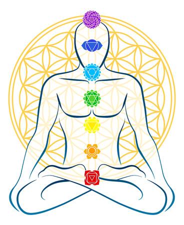 geometria: Meditando hombre con los siete chakras principales, que se adaptan perfectamente a las uniones de la Flor de la Vida-símbolo en el fondo Vectores