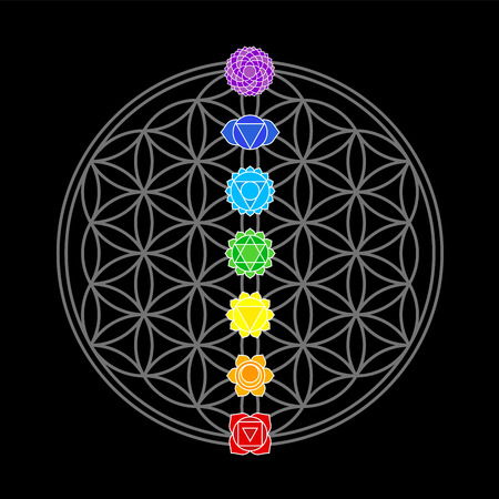 chakra healing: The seven main chakras, which match perfectly onto the junctions of the Flower-of-Life-Symbol - black background  Illustration