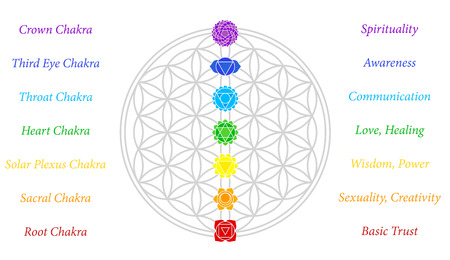 energy healing: The seven main chakras and their meanings, which match perfectly onto the junctions of the Flower-of-Life-Symbol - white background