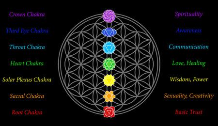 Die sieben wichtigsten Chakren und deren Bedeutung, die perfekt auf die Verbindungsstellen der Blumen-of-Life-Symbol entsprechen - schwarzer Hintergrund
