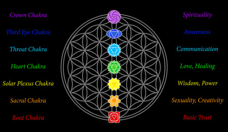 The seven main chakras and their meanings, which match perfectly onto the junctions of the Flower-of-Life-Symbol - black background  Illustration
