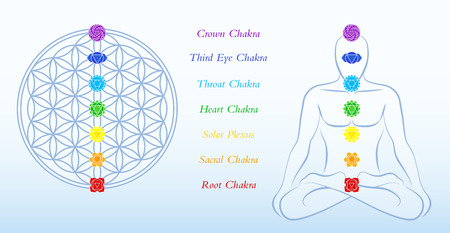 Flower of life and meditating man, both with symbols of the seven main chakras plus description Vector