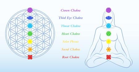 reiki: Fiore della vita e meditando donna, sia con i simboli dei sette chakra principali pi� descrizione