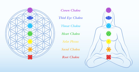 chakra energy: Flower of life and meditating woman, both with symbols of the seven main chakras plus description Illustration