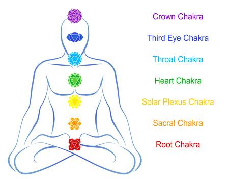illuminati: Sette chakra principali in rilievo lungo le regioni del corpo corrispondenti di un uomo meditare Vettoriali