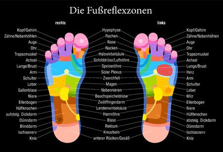 Tabela stóp refleksologii z dokładnym opisem