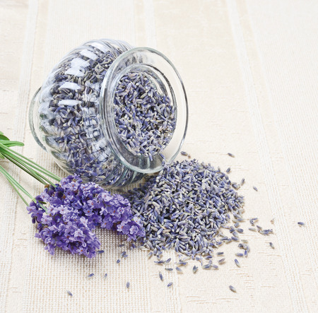 lavender flowers: Lavender Flowers Fresh And Dry - Dried lavender in a open glass on canvas next to a posy of fresh lavender  Stock Photo