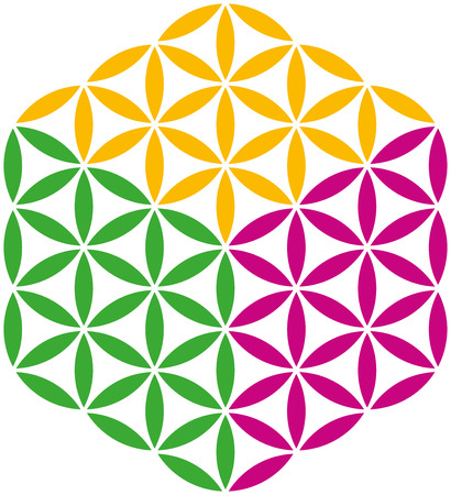 Flower of Life Cube, created with three different colors  Isolated vector illustration on white background  Vector