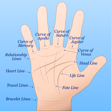 psychic reading: Palmistry - Right hand with lines and their names