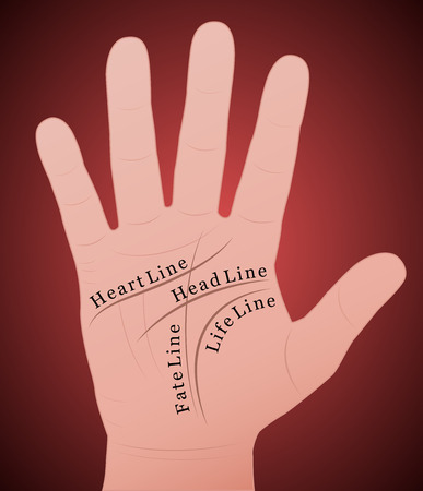 Palmistry - Right hand with the four main lines and their names  Vector
