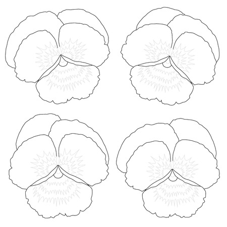 kinder garden: Outline picture of four pansies to be colored  Vector illustration on white background  Illustration