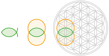 Vesica Piscis shape can be derived from Flower of Life  Bladder of a fish in Latin, also called mandorla in Italian that means almond