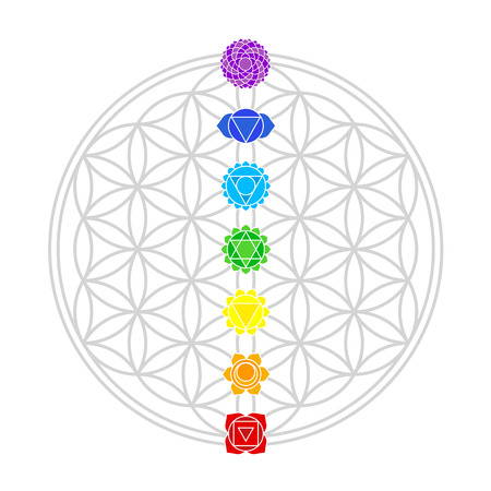 Seven main chakras match perfectly onto the junctions of the Flower of Life Banco de Imagens - 30731793