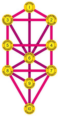 attribute: Sephirot en Tree of Life Geel Magenta - Tree of Life met de tien Sephirot van de Hebreeuwse Kabbala. Elke Sephirah met nummer, attribuut, emanatie en Hebreeuwse naam.