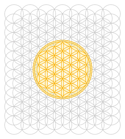 Development of Flower of Life from a sea of circles. Sacred geometry forming a flower-like pattern. A spiritual symbol since ancient times.