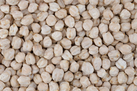 garbanzo bean: Chickpeas Background. White chickpeas on a straight surface coated, usable as background.