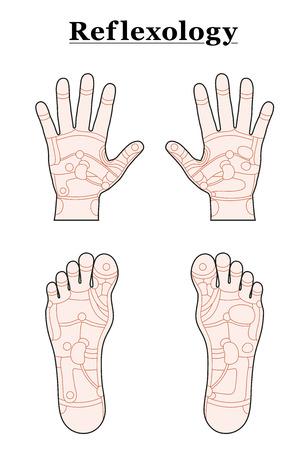 Handen en voeten verdeeld in de reflexologie zones van de overeenkomstige interne organen en lichaamsdelen. Schets vector illustratie op witte achtergrond.
