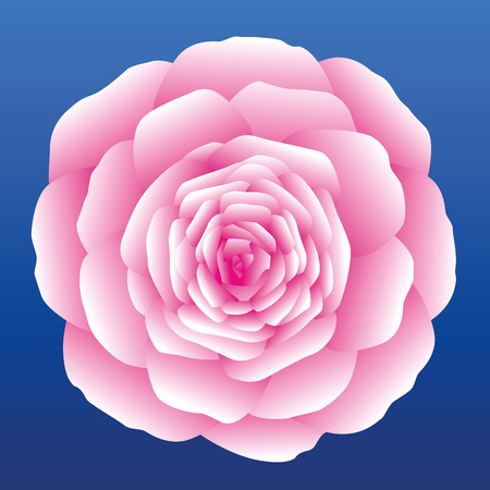 Pink carnation, rose or marigold on blue sky background. Isolated vector illustration.