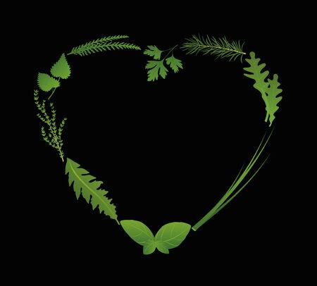 cebollin: Hierbas para ensaladas y para cocinar que dan forma a un corazón. Ilustración vectorial aislados en fondo negro.
