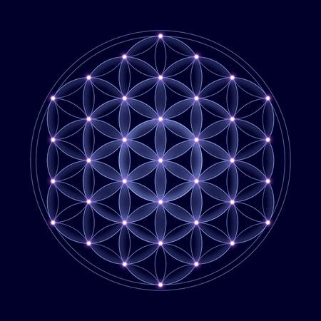 Kosmische Blume des Lebens mit Sternen auf dunkelblauen Hintergrund, ein spirituelles Symbol und Heilige Geometrie seit der Antike.