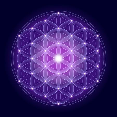 明るい花で生命の暗い青色の背景、精神的な記号および神聖な幾何学の古代時以来星。